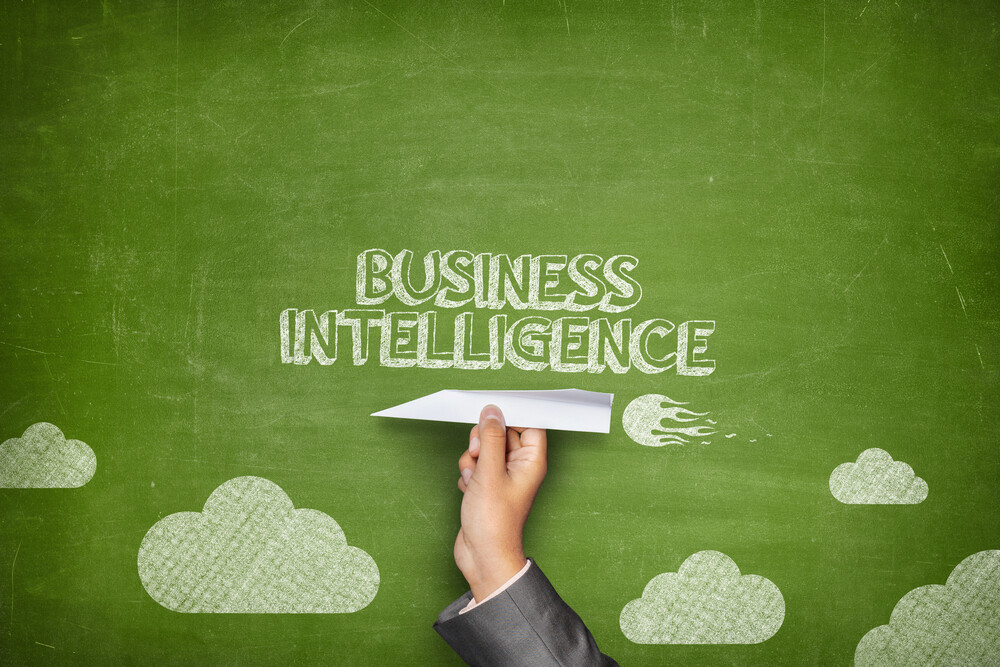 embedding business intelligence into software