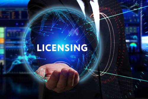 big data in software license management